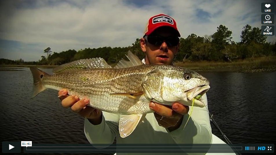 Video fly fishing for redfish in april redfish on fly for Fly fishing for redfish