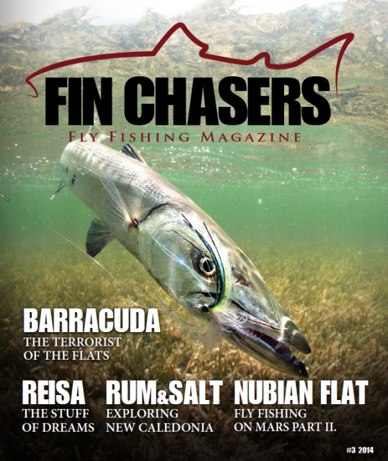 fin-chasers